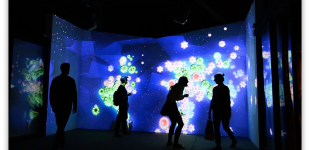 Whorl - an Interactive Installation